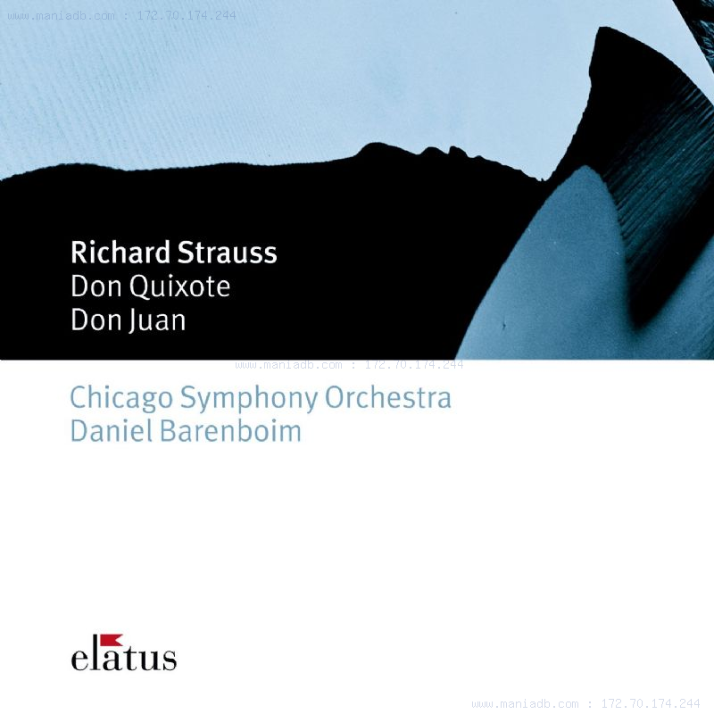 program music richard strausss don quixote essay